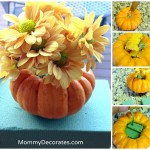 Georgia's Dream Nannies: Easy Fall Party Ideas Just For Mommy's